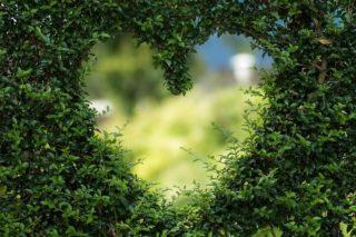 о влюбленности